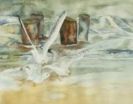 Möwen in der Brandung (c) Aquarell von Frank Koebsch