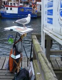 Ich lasse mein Aquarell durch eine Möwe signieren ... (c) Frank Koebsch