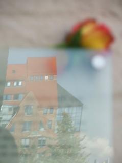 Blick auf die Umgebung der HMT (c) Frank Koebsch