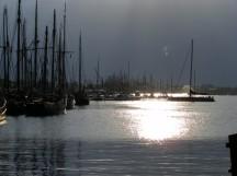 Hanse Sail - Amada im Gegenlicht