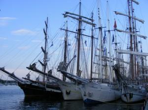 Hanse Sail - Fünf im Verband
