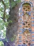 Kloster Eldena 12