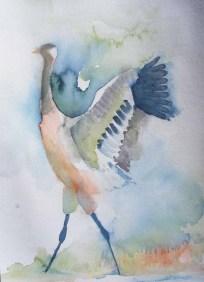 Ein Prachtkerl (c) ein Kranichaquarell von Frank Koebsch