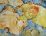 Hasel im Herbst (c) Aquarell von FRank Koebsch