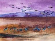 Schlafenszeit (c) ein Kranich Aquarell von Frank Koebsch