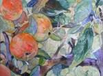 süß sauer - Ein Apfelbild in Aquarell von Frank Koebsch ©