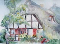 Inselgarten - (c) Aquarell von Frank Koebsch