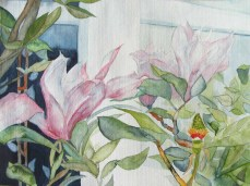 Blüten vor dem Fenster (c) Aquarell von Frank Koebsch