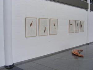 Brändli Zeichnunen & Installation
