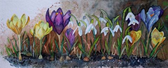 Die Frühlingssonne lockt die ersten Blüten (c) Aquarell mit Krokussen und Schneeglöckchen von Frank Koebsch
