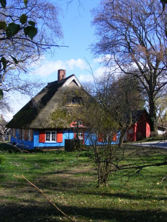 Fischland - Ahrenshoop - Althagen im Frühling 1