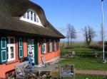 Fischland - Ahrenshoop - Althagen im Frühling 12