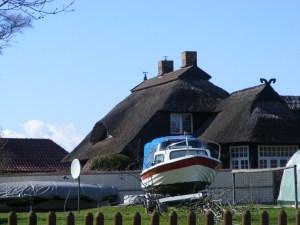 Fischland - Ahrenshoop - Althagen im Frühling 5