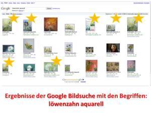 Google Bildsuche Löwenzahn Aquarell