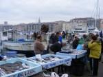 Fischmarkt von Marseille 2