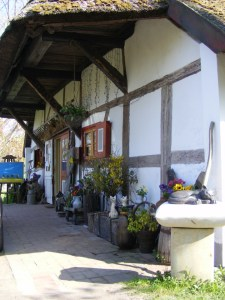 schmucke Häuser im Frühling - Fischland Darß (6)