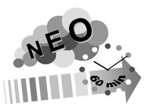 60 Minuten Begleiter voo Neo Rauch