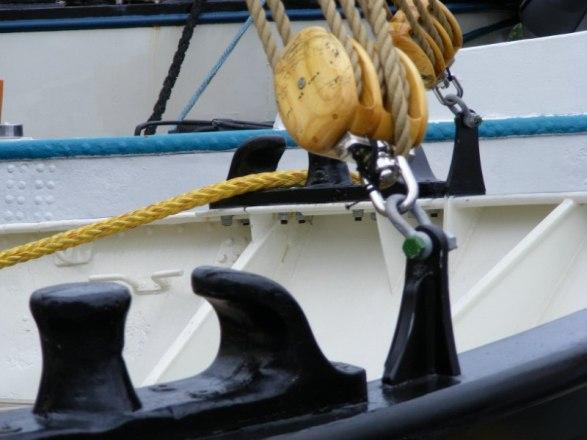 Hanse Sail 2010 (c) FRank Koebsch (10)