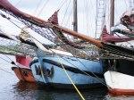 Hanse Sail 2010 (c) FRank Koebsch (11)