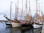 Hanse Sail 2010 (c) FRank Koebsch (12)