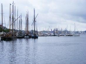 Hanse Sail 2010 (c) FRank Koebsch (2)