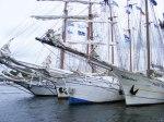Hanse Sail 2010 (c) FRank Koebsch (8)