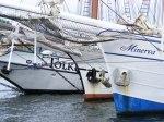 Hanse Sail 2010 (c) FRank Koebsch (9)