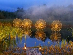 Licht Klang Nacht 2010 (5) Inszenierte Spinnennetze