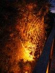 Licht Klang Nacht 2010 (7) Spinnennetz