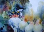 Distel als Hummellandeplatz (c) Aquarell von Frank Koebsch