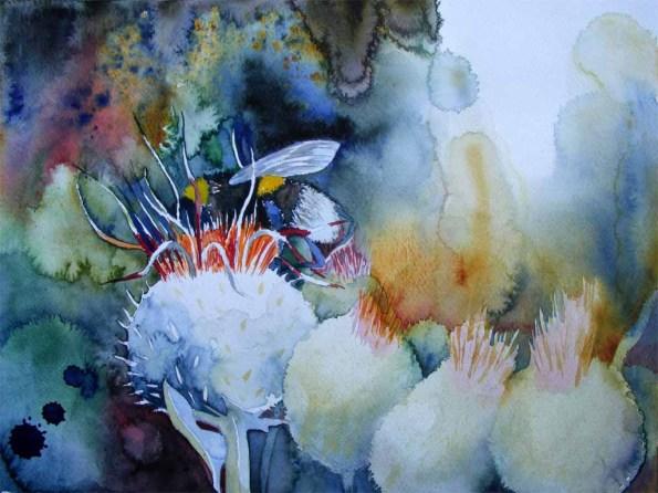 Distel als Hummellandplatz (c) Aquarell von Frank Koebsch