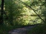 Herbst im Schlaubetal (c) Frank Koebsch (3)
