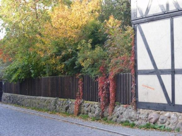 Fotosession beim Klarissen Kloster Ribnitz (c) Frank Koebsch (5)