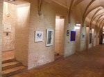 Kunstbörse 2010 der OstseeZeitung in der HMT (c) Frank Koebsch (2)