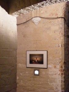 Kunstbörse 2010 der OstseeZeitung in der HMT (c) Frank Koebsch (4)