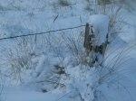 Winter an der Ostsee (12) (c) Frank Koebsch