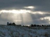 Winter an der Ostsee (5) (c) Frank Koebsch