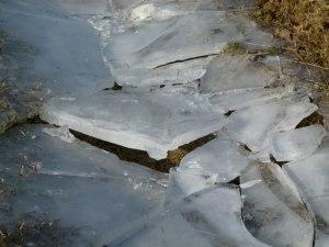 Eis auf den Pfützen 27. Febr. 2011