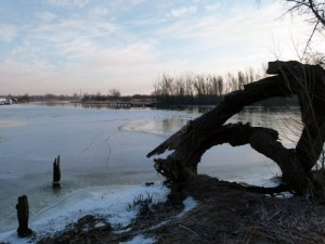 Winter an der Warnow (2) Frank Koebsch (c)