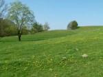 Osterwiesen an der Recknitz (c) Frank Koebsch