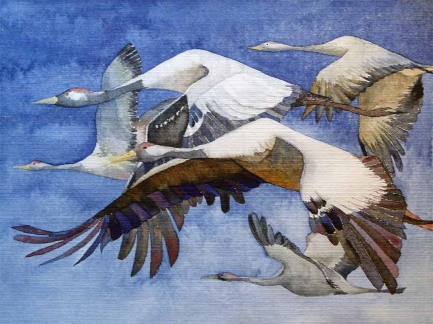 Formationsflug (c) Ein Kranichaquarell von Frank Koebsch