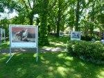 Fotofestival Horizonte Zingst - Openair Ausstellung am Postplatz (1)