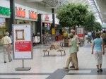 Kuck mal Kunst im Sieben Seen Center (c) Frank Koebsch