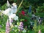 Blüten des Bertofs (c) Frank Koebsch