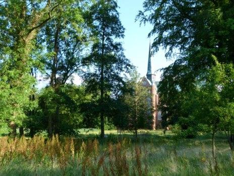 versteckt hinter Bäumen das Doberaner Münster (c) FRank Koebsch 1