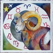 Sternzeichen Widder (c) Aquarell von Frank Koebsch