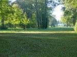 Sonniger Herbst in Park von Sanssouci (c) Frank Koebsch (11)