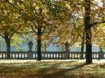 Sonniger Herbst in Park von Sanssouci (c) Frank Koebsch (7)