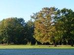 Sonniger Herbst in Park von Sanssouci (c) Frank Koebsch (9)