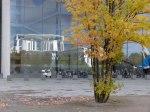 Spiegelung des Bundeshanzelamtes im Herbst (c) FRank Koebsch